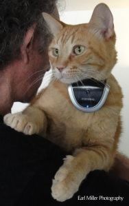 Kaspar wearing his eyenimal camera on the set